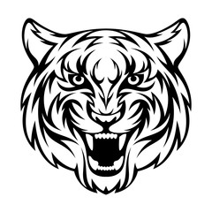 Tiger head on a white background