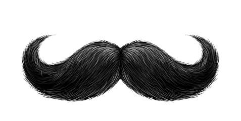 Vector realistic black mustache