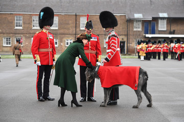 Britain's Catherine, Duchess of Cambridge strokes mascot Irish Wolfhound, Domhnall, as she attends the presentation of Shamrock to the 1st Battalion Irish Guards, at a St Patrick's Day parade at Cavalry Barracks in Hounslow, London