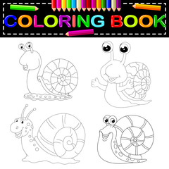 snail coloring book