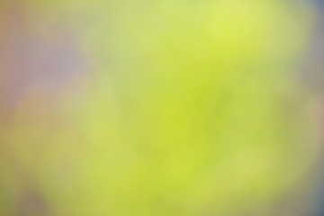 Nature gradient backdrop with bright sunlight. Abstract green blurred background. Ecology concept for your graphic design, banner or poster.