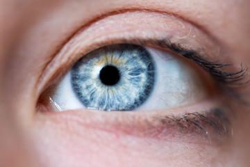 Blaues Auge und Wimpern natürlich, Seitenaufnahme