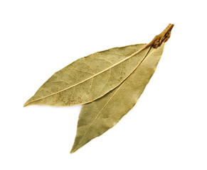 Two bay leaves isolated on white