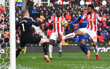 Premier League - Stoke City vs Everton