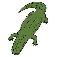 vector of crocodile