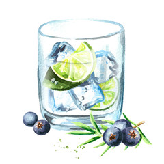 Gin tonik with ice cubes, lime slice and juniper berries. Watercolor hand drawn illustration, isolated on white background