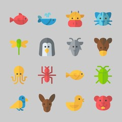 Icons about Animals with kangaroo, bird, chicken, horse, octobus and cat