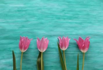 Blumenwiese - Blumen auf selbst gemaltem Hintergrund in Grün
