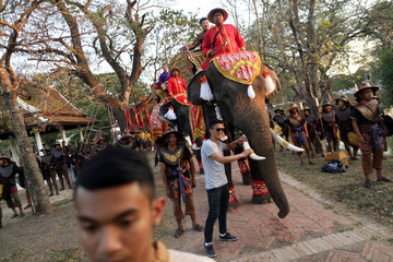 "A man poses for photo with elephants during the opening ceremony known as ""Wai Kru"" to pay respects to Muay Thai elders in the ancient city of Ayutthaya"