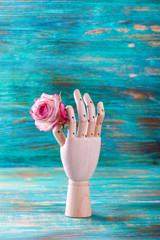 Rose in wooden hand on turquoise background