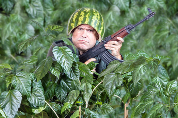 Funny soldier with a machine gun AK 47 sticking out of the green leaves. Crazy man in a helmet of watermelon patrolling with kalashnikov in his hands.
