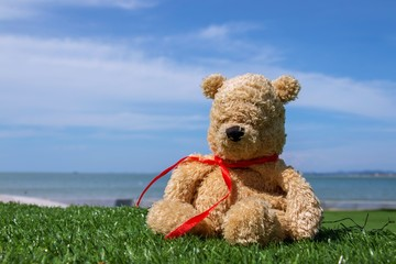 LOnely bear is sitting alone at seaside on hoilday