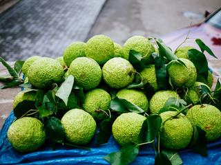 Green fruit is a slide. background bokeh