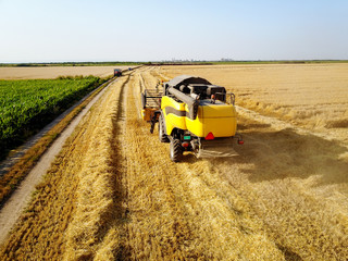 Rear view of combine harvester machine while working in the wheat field with tractor in front on a sunny day.
