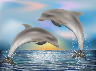 Two Dolphins background. vector illustration
