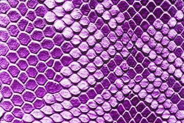 Wall Mural - Violet snake skin background. Close up.