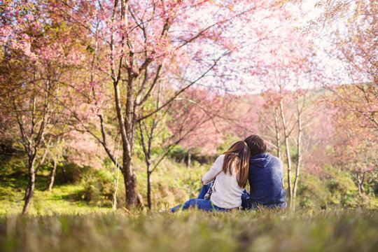 Young couple walking in the park and looking cherry blossoms tree