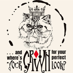 hand drawn cat portrait typography background.