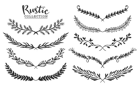 Vintage set of hand drawn rustic laurels and dividers. Floral vector graphic.