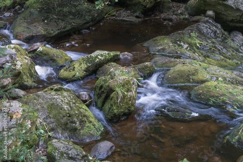 Wildbach Serie Stream