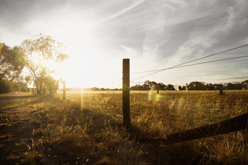 Sunset at a farm in the bush with long fence and flare, Grampians, Victoria, Australia