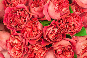 Beautiful roses lylies boquet background