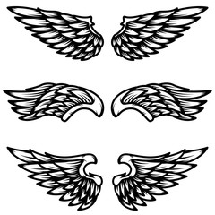 Set of wings isolated on white background. Design element for logo, label, emblem, sign.
