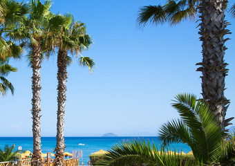 Palms against of blue sky. Holidays concept image. Greece