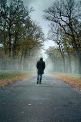 Fototapeten Fontane the man is walking along a misty alley