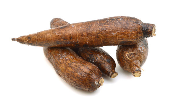 yuca roots isolated on white background