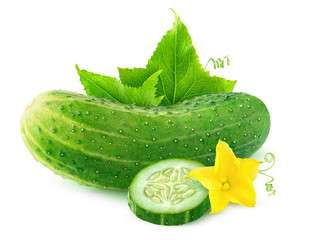 Isolated cucumber. One whole cucumber and a slice with flower and leaves isolated on white background with clipping path