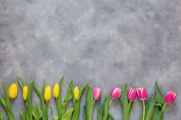 Spring nature background with blossom. Springtime concept. Top view.