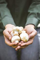 farmer with mushrooms