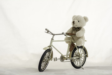 Teddy bear on bicycle models ,white background