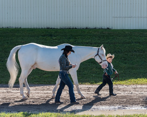 young woman using smartphone while small boy in cowboy outfit leads large white horse