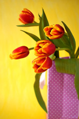 Bouquet of red tulips in a present bag on bright yellow background