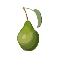Green pear on white background. Vector illustration