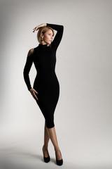 Fashion Model Long Black Dress, Elegant Woman Beauty Portrait, Lady Posing over White Studio background