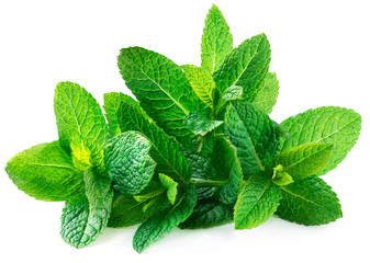 Canvas Prints Aromatische Fresh spearmint leaves isolated on the white background.