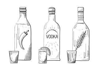 Sketch three different bottles of vodka. Pepper, classical and wheat. Vector illustration