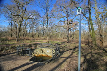 Protected salt spring in Rotehornpark in Magdeburg