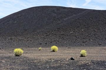 Teneriffa - Fasnia Vulkan