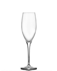 Champagne glass on a white background
