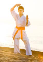 Boy doing karate poses
