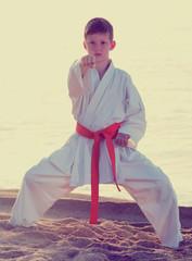 Young boy practising karate poses at seaside