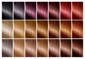 Hair color palette with a range of swatches. Tints. Color chart for hair dye