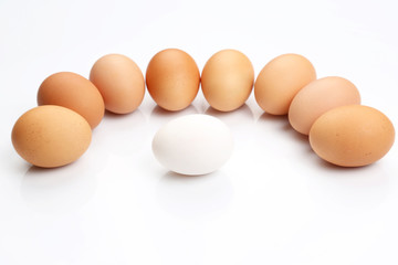chicken eggs on white background.