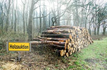 Holzauktion, Holzstapel zur Versteigerung mit Werbeschild im Wald