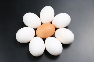 chicken eggs on dark background.