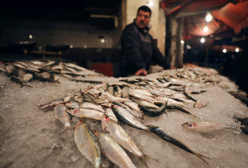 A vendor waits for customers at a fish market near the canal of Port Said